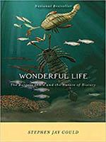 Couv-wonderful-life